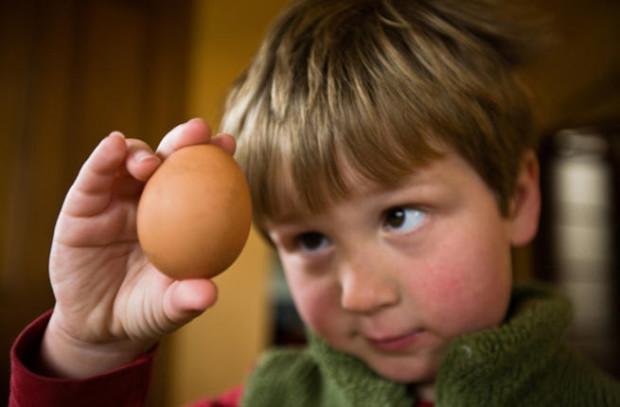 Аллергия на куриный белок у детей симптомы