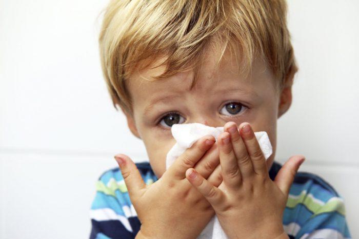 ринит сезонный и аллергический