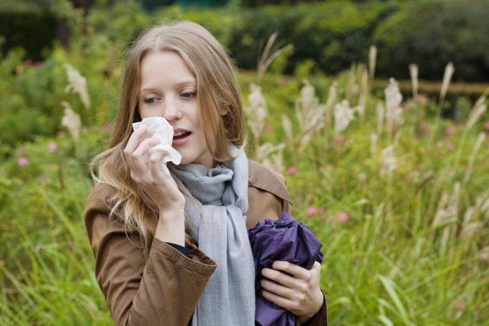 риниты сезонные и аллергические