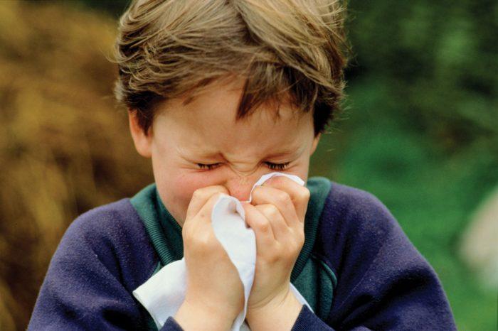 чихание и жжение в носу