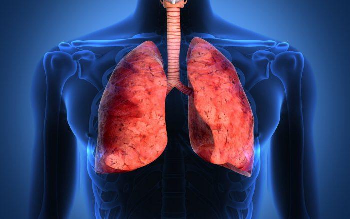 инфекции верхних дыхательных путей